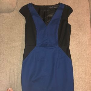 Knee Length Zara Dress